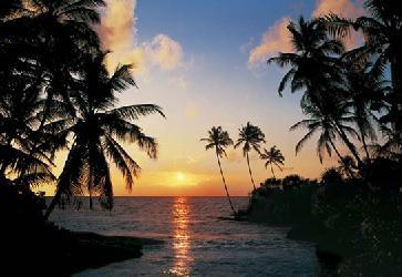 Poster para pared - Tropical sundown Enmarcado de cuadros