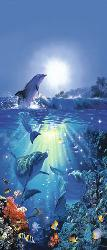 Poster para pared - Dolphin in the sun Enmarcado de laminas