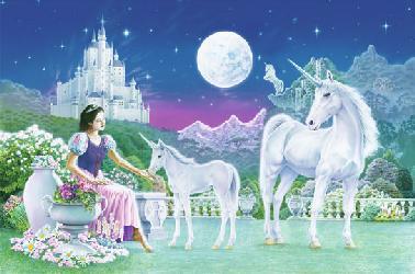 Poster para pared - Unicorn princess Marcos y Cuadros