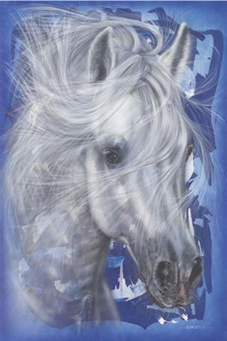 Enmarcado de cuadros laminas posters animales horse in for Enmarcado de cuadros precios