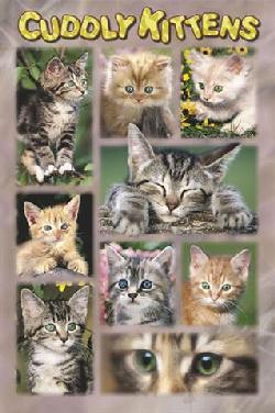 Enmarcado de cuadros laminas posters animales cuddly - Enmarcado de cuadros ...