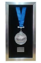 Enmarcado de Medalla II Enmarcado de cuadros