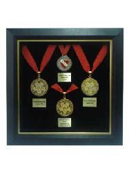 Enmarcado de Medallas II Enmarcado de cuadros