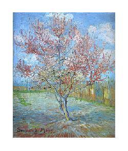 Vincent Van Gogh  Duraznero en Flor Enmarcado de laminas