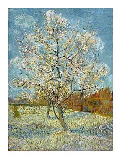 Vincent Van Gogh  Duraznero Rosado Enmarcado de laminas