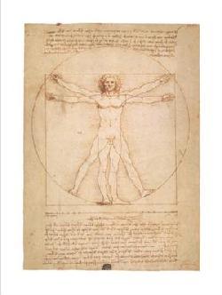 Lamina - Vitruvian man Enmarcado de laminas