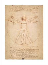 Lamina - Vitruvian man Marcos y Cuadros