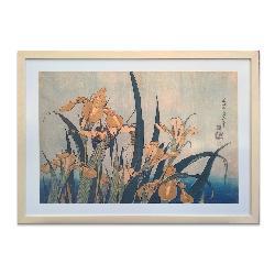 cuadro Saltamonte e iris, Hokusai Enmarcado de laminas