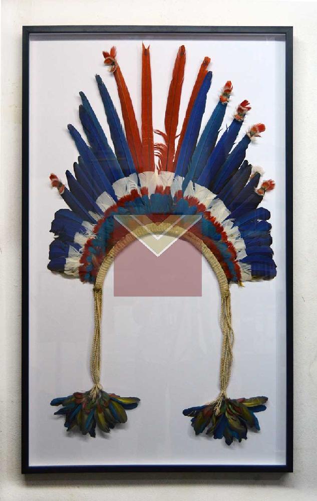 Enmarcado sombrero de plumas