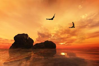Sunset Enmarcado de cuadros