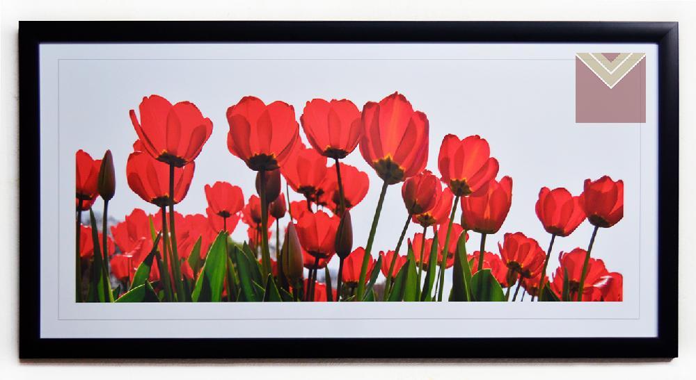 Cuadro tulipanes rojos