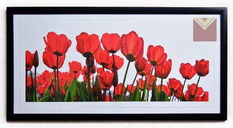 Cuadro tulipanes rojos Enmarcado de laminas
