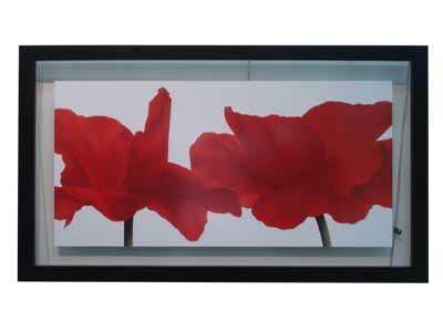 Cuadro - Red III