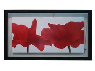 Cuadro - Red III Enmarcado de laminas